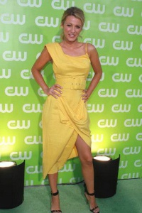 2007 CW TCA Summer party