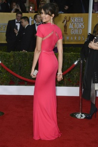 2013 19th Annual Screen Actors Guild Awards
