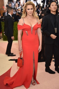 Amy Schumer in Alexander Wang